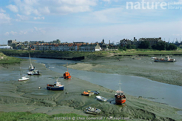 Estuary with boats on intertidal mudflats at low tide, Cardiff Bay, Wales, UK  ,  BUILDINGS,EUROPE,LANDSCAPES,littoral,RIVERS,UK,WALES,United Kingdom,Intertidal,British  ,  Chris Gomersall
