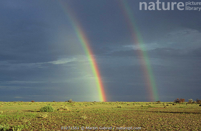 Double rainbow over plains, Etosha NP, Namibia, Southern Africa  ,  AFRICA,GRASSLAND,LANDSCAPES,NP,RESERVE,SAVANNA,SKIES,SOUTHERN AFRICA,VELDT,WEATHER,WET SEASON,National Park  ,  Martin Gabriel