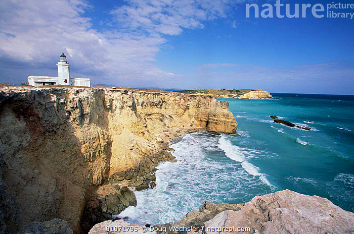Lighthouse on cliff Cabo Rojo, Puerto Rico, West Indies  ,  BUILDINGS,CARIBBEAN,CLIFFS,COASTS,HORIZONTAL,LANDSCAPES,LIGHTHOUSES,SEA,Geology,West Indies  ,  Doug Wechsler