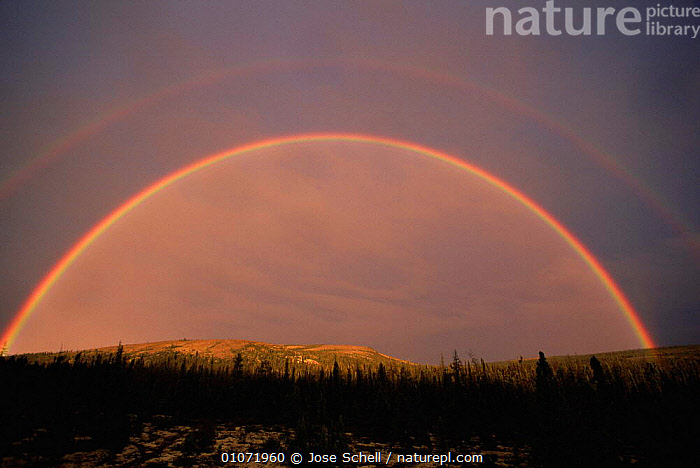 Double rainbow over taiga habitat, Northern Quebec, Canada, CANADA,CONIFEROUS,LANDSCAPES,NORTH AMERICA,RAINBOWS,TAIGA,TREES,Weather,Plants, Jose Schell