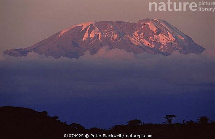 Mount Kilimanjaro, Tanzania  ,  AFRICA,CLOUDS,EAST AFRICA,LANDSCAPES,MOUNTAINS,SNOW,Weather,EAST-AFRICA  ,  Peter Blackwell