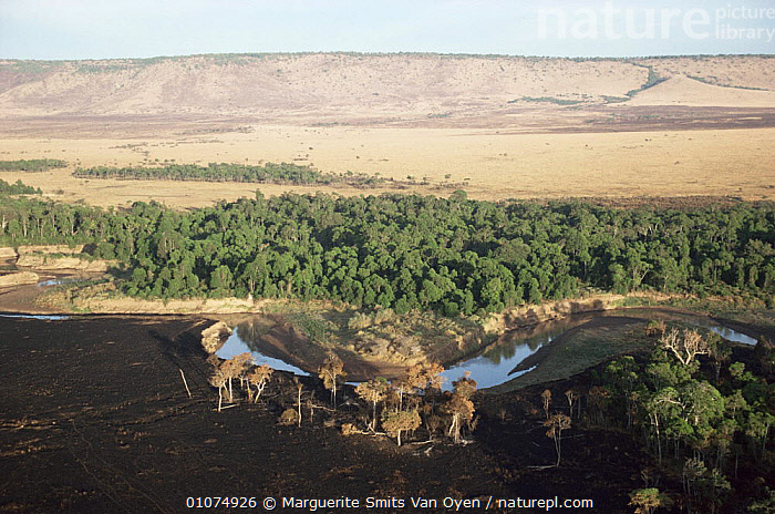 Mara river with Rift in background, and burnt foreground, Kenya  ,  AFRICA,EAST AFRICA,FIRE,HORIZONTAL,LANDSCAPES,RESERVE,RIVERS,EAST-AFRICA  ,  Marguerite Smits Van Oyen