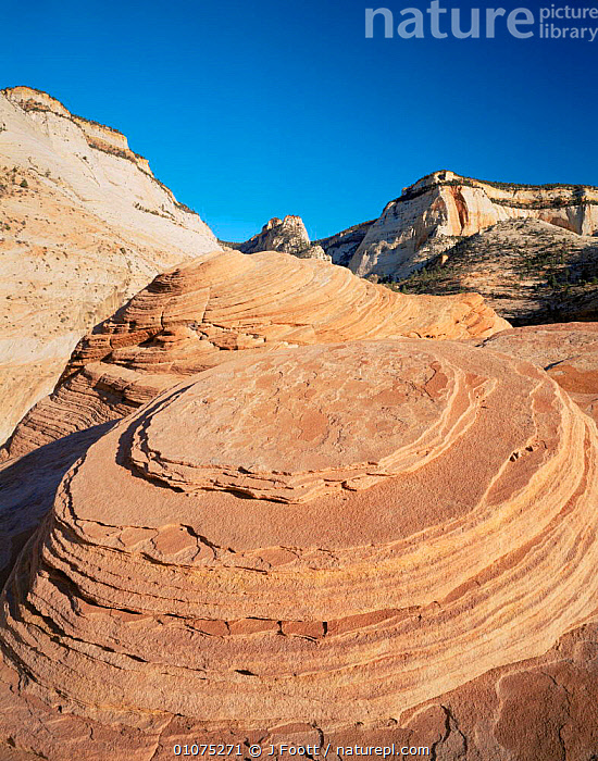 Close up detail of wind eroded patterns in Navajo sandstone, Zion NP, Utah, USA  ,  canyons,EROSION,LANDSCAPES,NORTH AMERICA,PATTERNS,RESERVE,ROCK FORMATIONS,USA,VERTICAL,wind eroded,Geology  ,  J Foott