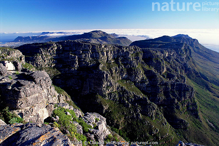 Table mountain, Cape Town, South Africa  ,  LANDSCAPES,MOUNTAINS,SOUTHERN AFRICA,PLATEAU  ,  Claudio Velasquez