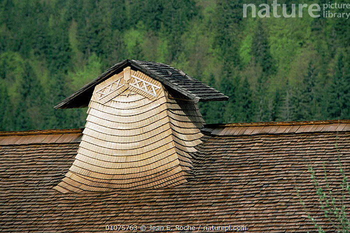 Traditional roof and chimney of farmhouse made from wood of Spruce tree, 'Travaillons', Haut Jura, France  ,  alps,BUILDINGS,EUROPE,FRANCE,tiles  ,  Jean E. Roche