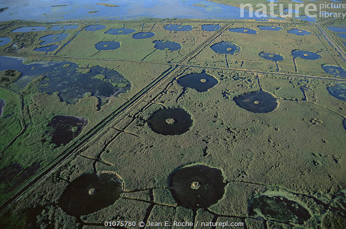 Aerial view of wetlands with pools made for wildfowl hunting Camargue, France  ,  COASTS,EUROPE,FRANCE,HABITAT,HORIZONTAL,HUNTING,HUNTING SPORT,LANDSCAPES,MANAGEMENT,PATTERNS,SHOOTING,VERTICAL,WATERFOWL,WETLANDS  ,  Jean E. Roche