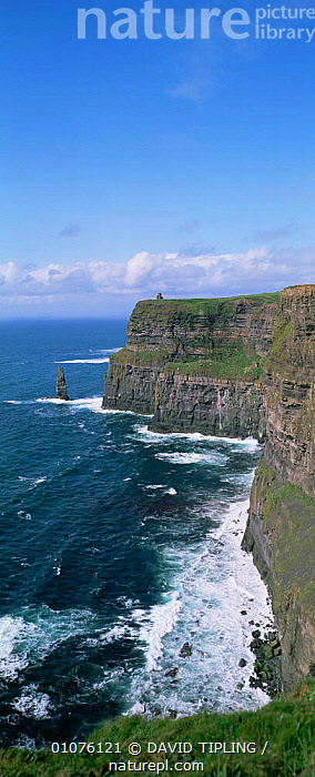 Panoramic view of Cliffs of Moher, County Clare, Ireland, Eire  ,  CLIFFS,coastal waters,coastline,COASTS,EIRE,EUROPE,IRELAND,LANDSCAPES,MARINE,panoramic,sea,seascapes,VERTICAL,Geology  ,  DAVID TIPLING