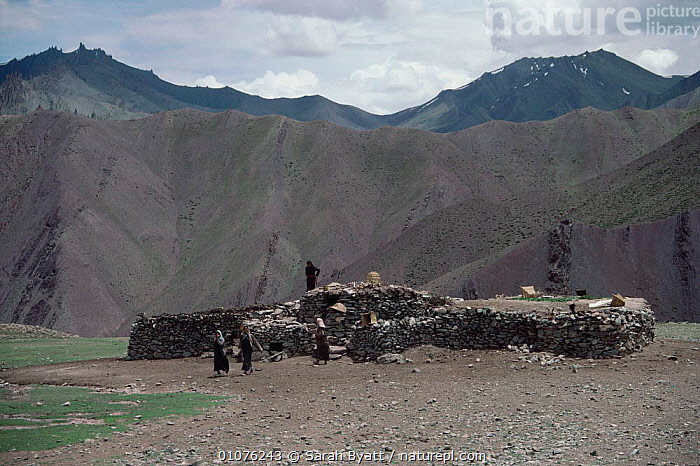Traditional low stone house construction with dung covered roof, on high pass between Stok and Matho, Ladakh, North West India  ,  alitude,ASIA,BUILDINGS,construction,HIGHLANDS,HOMES,INDIAN SUBCONTINENT,LANDSCAPES,MOUNTAINS,PEOPLE,resources,TRADITIONAL,INDIAN-SUBCONTINENT  ,  Sarah Byatt