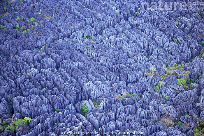 Aerial view of Tsingy, limestone rock formations, Bemaraha reserve, Madagascar  ,  AFRICA,LANDSCAPES,MADAGASCAR,RESERVE,ROCK FORMATIONS,Geology  ,  Martin H Smith