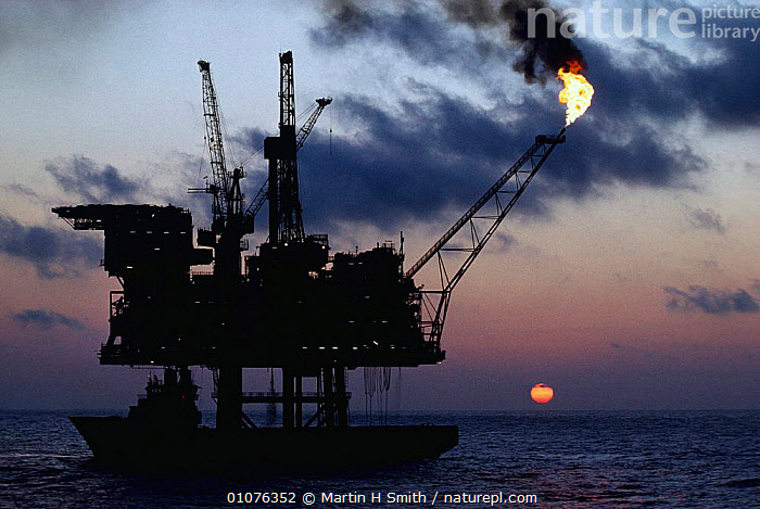 Oil rig with supply ship North Sea  ,  ENERGY,FLAME,EUROPE,FIRE,CRUDE,BOATS,NIGHT  ,  Martin H Smith