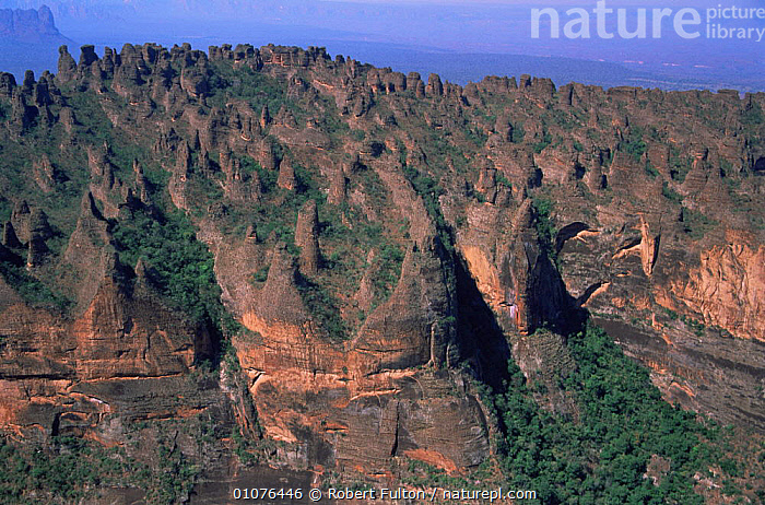 Aerial view of sandstone escarpments, nodular pinnacles, Brazil, South America 2000  ,  AERIALS,CLIFFS,HIGHLANDS,LANDSCAPES,ROCK FORMATIONS,ROCKS,SOUTH AMERICA,TREES,TROPICAL RAINFOREST,Geology,Plants,SOUTH-AMERICA  ,  Robert Fulton