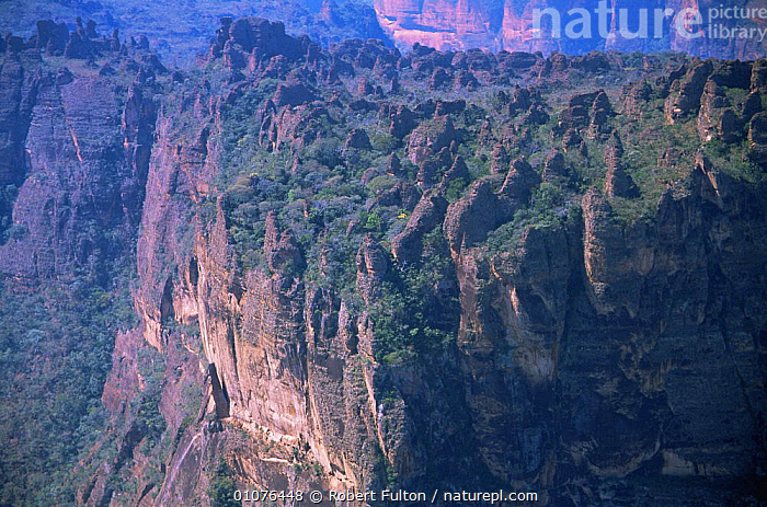 Aerial view of sandstone cliffs nodular pinnacles, Brazil, near Pantanal, South America 2000  ,  AERIAL,CLIFFS,LANDSCAPES,ROCK FORMATIONS,ROCKS,SOUTH AMERICA,TREES,TROPICAL RAINFOREST,Geology,Plants,SOUTH-AMERICA  ,  Robert Fulton