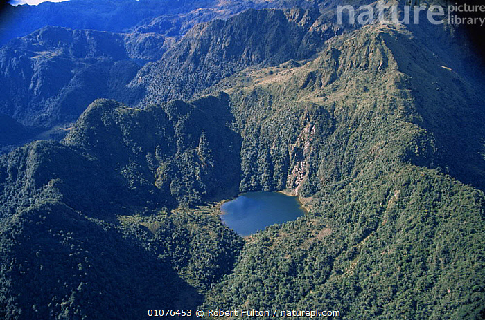 Aerial view of lake amongst tree covered mountains, Peru, South America  2000  ,  AERIALS,HIGHLANDS,LAKES,LANDSCAPES,MOUNTAINS,SOUTH AMERICA,TREES,TROPICAL RAINFOREST,Plants,SOUTH-AMERICA  ,  Robert Fulton