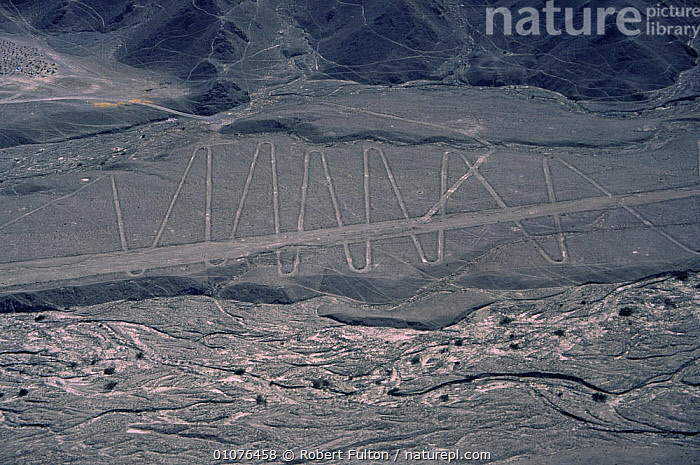 Aerial view of Nazca lines on mountain side, Peru, South America  2000  ,  AERIALS,ANCIENT,CULTURES,LANDSCAPES,LINES,OLD,PATTERNS,SOUTH AMERICA,TRIBES,SOUTH-AMERICA  ,  Robert Fulton