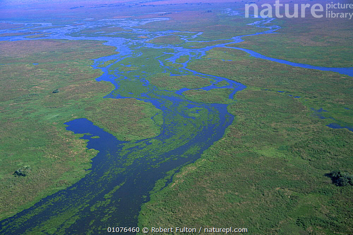 Aerial view of Pantanal landscape, in wet season, Brazil, South America  2000  ,  AERIALS,FLOODING,FLOODS,LANDSCAPES,SOUTH AMERICA,WATER,WET SEASON,WETLANDS,SOUTH-AMERICA  ,  Robert Fulton