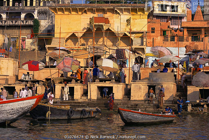 Daily life on the Ghats besides the holy Ganges, Varanesi / Benares, Uttar Pradesh, India  ,  ASIA,BOATS,BUILDINGS,holy,INDIAN SUBCONTINENT,PEOPLE,RIVERS,sacred,temples,URBAN,WATER,INDIAN-SUBCONTINENT,INDIA  ,  Nick Barwick