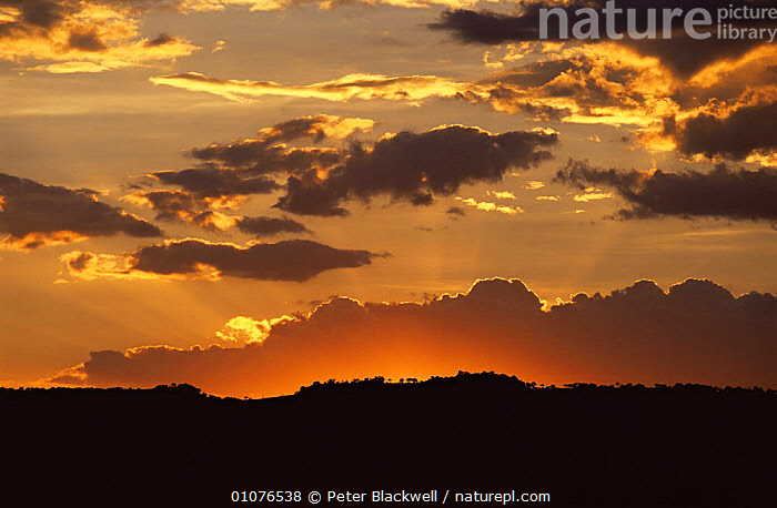 Sun setting with dark clouds and silhouette of Masai Mara plains, Kenya  ,  AFRICA,CLOUDS,EAST AFRICA,LANDSCAPES,SILHOUETTES,SKIES,SKY,SUNSET,WEATHER  ,  Peter Blackwell