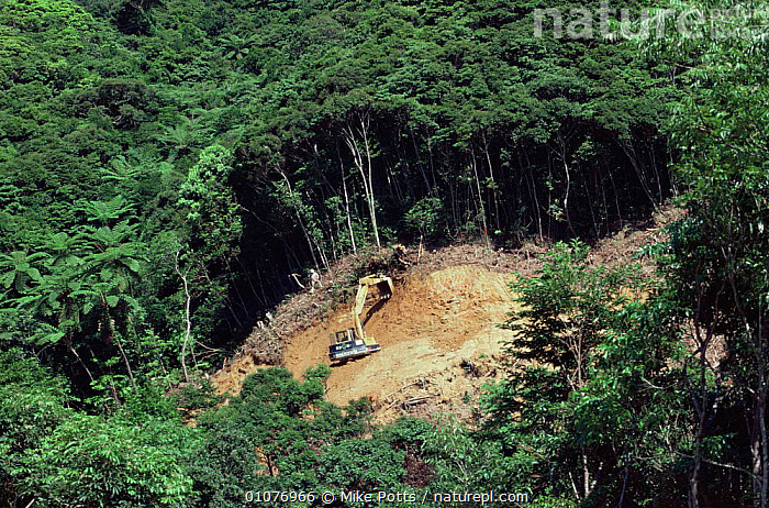 Rainforest clearance for road building, Okinawa, Southern Japan. Note - habitat of Pryors woodpecker 2001  ,  ASIA,DEFORESTATION,environment,ENVIRONMENTAL,HABITAT,HORIZONTAL,JAPAN,MACHINERY,ROADS,SOIL,VEHICLES,WOODLANDS  ,  Mike Potts