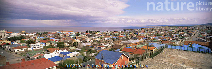 View over rooftops of Punta Arenas, Chile  ,  BUILDINGS,CITIES,COASTS,LANDSCAPES,PANORAMIC,SOUTH AMERICA,TOWNS,SOUTH-AMERICA  ,  David Tipling