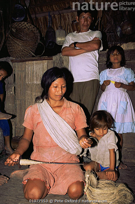 Quechua Indian woman making palm fibre string, Ecuadorian Amazon 2002  ,  CHILDREN,CULTURES,FAMILIES,FEMALES,GROUPS,HOMES,PEOPLE,QUICHUA,SOUTH AMERICA,SPINNING,TRADITIONAL,TRIBES,VERTICAL,WOMAN,WORKING  ,  Pete Oxford