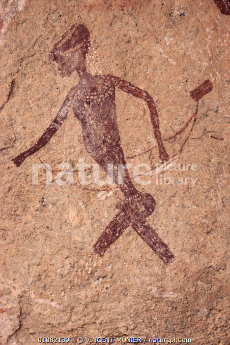 Rock painting of bushmen, Brandberg mountain summit, Namibia, AFRICA,ARTIFACTS,cave paintings,CAVES,SOUTHERN AFRICA,VERTICAL,Catalogue1, VINCENT MUNIER