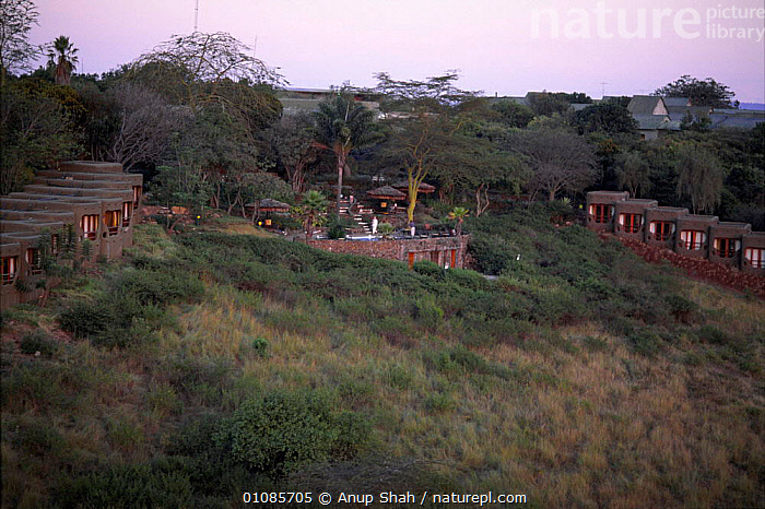 Mara Serena visitor lodge, Masai Mara, Kenya East-Africa  ,  35,ACACIA,AFRICA,ANUP,AS,CONCEPTS,EAST AFRICA,GRASSLAND,HOLIDAYS,HORIZONTAL,LANDSCAPES,LODGE,MARA,MASAI,SAVANNA,SERENA,SHAH,TOURISM,VISITOR,EAST-AFRICA  ,  Anup Shah