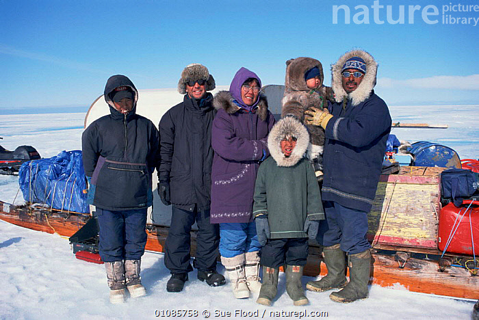 Cameraman Doug Allan with Inuit family +and sledges on filming trip, Nunavut, Canada  ,  ARCTIC,BLUE PLANET,CANADA,EXPEDITION,FAMILIES,FAMILY,FILMING,HORIZONTAL,INUIT,INUITS,PEOPLE,SF,SLEDGES,SNOW,TRIP,NORTH AMERICA  ,  Sue Flood
