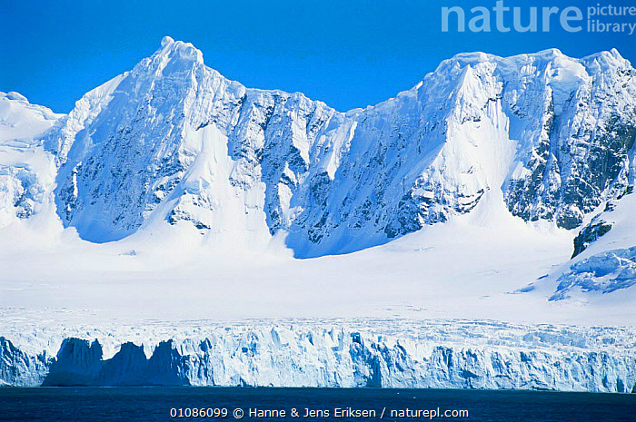 Elephant Island, Antarctica - glacier, mountains and sea  ,  ANTARCTICA,GLACIERS,HORIZONTAL,ICE,LANDSCAPES,MOUNTAINS,POLAR,SNOW,SUMMER,Geology  ,  Hanne & Jens Eriksen