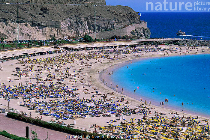 Amadores beach covered with holiday makers, Gran Canaria, Canary Isles, Spain  ,  ATLANTIC OCEAN,BEACHES,CANARIES,COASTAL WATERS,COASTS,CROWDS,EUROPE,HOLIDAYS,LANDSCAPES,PEOPLE,SPAIN,SUMMER,SWIMMING,TOURISM,TOURISTS,Marine,Concepts,CANARY ISLANDS  ,  Jose B. Ruiz