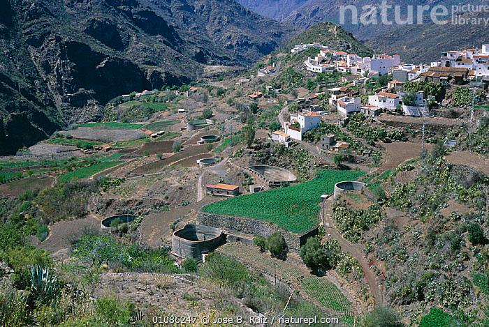 Village in Bentaiga valley, Tejeda, Gran Canaria,  Canary Isles, Spain  ,  CANARIES,EUROPE,HORIZONTAL,INLAND,JRU,LANDSCAPES,MOUNTAINS,SPAIN,TEJEDA,VALLEY,VILLAGES  ,  Jose B. Ruiz