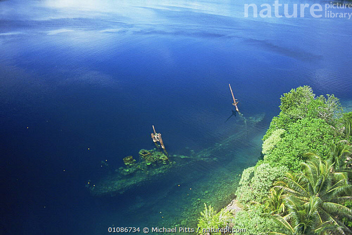 WWII Kasi Maru Japanese freighter sunk, now an artificial coral reef, off coast of New Georgia, Solomon Island  ,  AERIALS,BOATS,COASTAL WATER,COASTS,CORAL REEFS,LANDSCAPES,OCEANIA,PACIFIC ISLANDS,SHALLOW,SHIPS,TROPICAL,TROPICS,UNDERWATER,WAR,Marine  ,  Michael Pitts