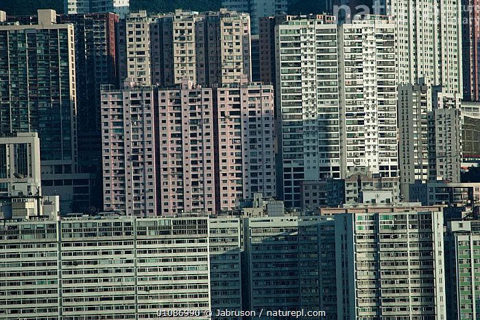 High rise flats, Kowloon, Hong Kong, China.  ,  ASIA,BUILDINGS,CHINA,CITIES,MODERN,POPULATION , Bruce Davidson  ,  Jabruson