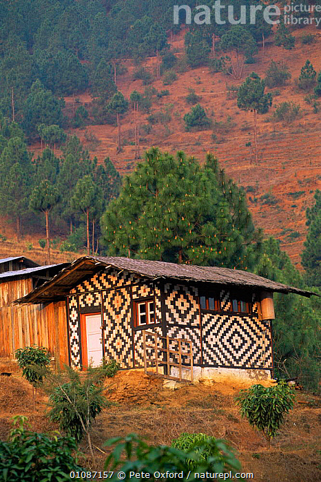 Traditional peasant house, Punakha, Central Bhutan 2001  ,  ASIA,BUILDINGS,LANDSCAPES,VERTICAL,INDIAN-SUBCONTINENT  ,  Pete Oxford