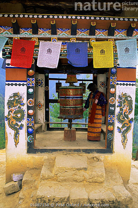 Buddhist Prayer wheels, Mani Dungkor temple, on way up to Taktsang monastry, Paro valley, Bhutan 2001  ,  ASIA,buddhism,BUILDINGS,PEOPLE,Religion,TRADITIONAL,VERTICAL,INDIAN-SUBCONTINENT  ,  Pete Oxford