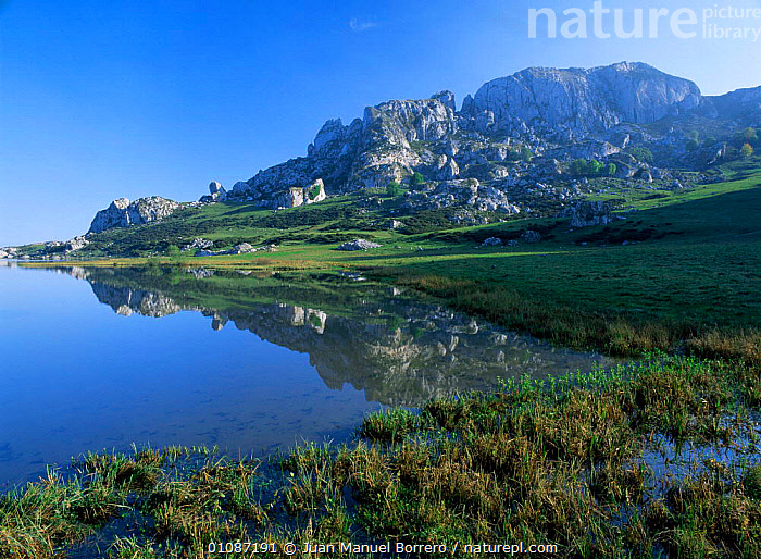Ercina lake, Picos de Europa national park, Cantabrian mountains, Asturias, Spain  ,  EUROPE,HIGHLANDS,HORIZONTAL,LAKES,LANDSCAPES,MOUNTAINS,NP,REFLECTIONS,RESERVE,SPAIN,National Park  ,  Juan Manuel Borrero