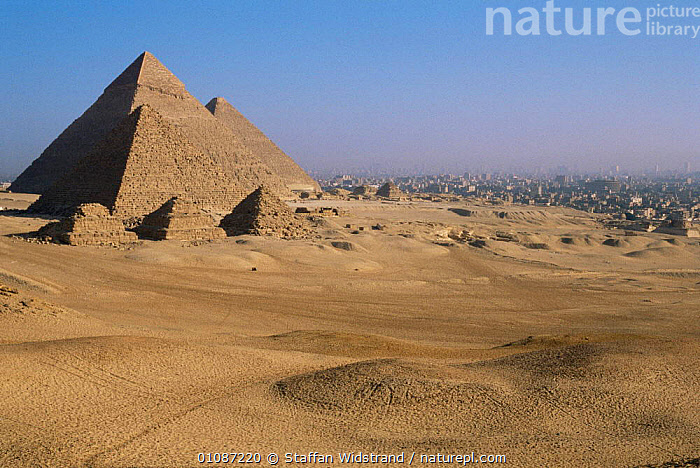 Looking across to Pyramids of Giza, ancient wonder of the world, with Cairo in background, Egypt, North Africa  ,  AFRICA,ANCIENT,ATTRACTIONS,CITIES,DESERTS,EGYPTIAN,LANDMARKS,LANDSCAPES,NORTH AFRICA,OLD,TOMBS,TOURISM,TRAVEL,WONDER OF WORLD,NORTH-AFRICA  ,  Staffan Widstrand
