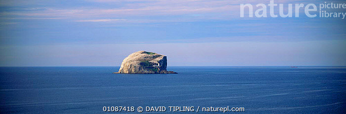 Distant view of Bass Rock, RSPB reserve and home to annual gannet breeding colony, Firth of Forth, Lothian, Scotland  ,  ATLANTIC,BASS,BIRDS,Breeding,EUROPE,LANDSCAPES,MARINE,OCEAN,panoramic,RESERVE,SCOTLAND,sea,SEABIRDS,UK,United Kingdom,British, United Kingdom, United Kingdom  ,  DAVID TIPLING