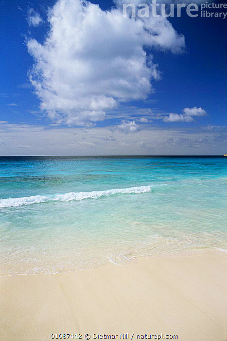 Looking out to sea from beach, Anse Royale, La Digue, Seychelles, Indian Ocean  ,  BEACHES,CALM,CLOUDS,COASTAL WATERS,COASTS,HOLIDAYS,INDIAN OCEAN,LANDSCAPES,LAPPING,MARINE,PEACEFUL,SEA,SEASCAPES,SEYCHELLES,SHORELINE,TROPICAL,VERTICAL,WATER,Concepts,Weather,INDIAN OCEAN ISLANDS  ,  Dietmar Nill