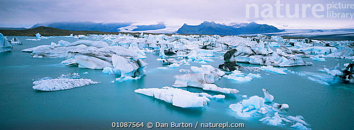 Icebergs breaking up in summer, Vatnajokull glacier, Iceland.  ,  ARCTIC,climate change,EUROPE,GEOLOGY,GLACIERS,ICE,LANDSCAPES,panoramic  ,  Dan Burton