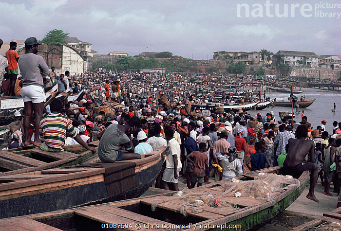 Crowds of local gather on beach at Jamestown fishing port, Accra, Ghana, West Africa  ,  AFRICA,BEACHES,BOATS,CITIES,COASTAL WATERS,COASTLINE,COASTS,CROWDS,FISHING,GROUPS,HARVESTING,HUNTING FOOD,LANDSCAPES,MARINE,MASS,PEOPLE,SEA,SHORELINE,WEST AFRICA,WEST-AFRICA  ,  Chris Gomersall