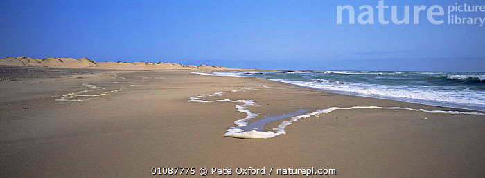 Shoreline landscape, Skeleton coast, Namibia  ,  AFRICA,ATLANTIC,BEACHES,COASTS,LANDSCAPES,SOUTHERN AFRICA,Catalogue1,Marine  ,  Pete Oxford
