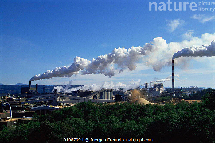 Grand scale wood processing industry on Vancouver Island, British Columbia, Canada  ,  BUILDINGS,CANADA,DEFORESTATION,ENVIRONMENTAL,INDUSTRY,logging,MACHINERY,NORTH AMERICA,PEOPLE,POLLUTION  ,  Jurgen Freund