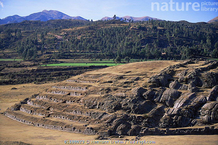 Saqsaywaman, historial Inca site close to Cusco, Peru, South America, ANCIENT,ATTRACTION,CIVILISATIONS,CIVILIZATIONS,CULTURES,LANDMARK,LANDSCAPES,OLD,PEOPLE,SOUTH AMERICA,TRADITIONAL,TRIBES,WALLS,SOUTH-AMERICA, Hermann Brehm