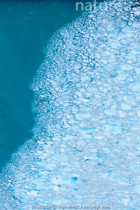 Aerial view of edge of ice flow of Perito Moreno glacier, Patagonia, Argentina, ABSTRACT,AERIALS,ARTY,BRASH,GLACIAL FEATURES,GLACIERS,ICE,LANDSCAPES,MARINE,PATTERNS,SEA,SOUTH AMERICA,VERTICAL,Geology,SOUTH-AMERICA, Ingo Arndt
