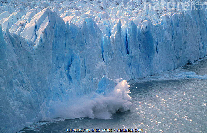 Perito Moreno glacier, calving sequence 2/3 Patagonia, Argentina, ACTION,GLACIERS,SPLASH,LANDSCAPES,ICE,FALLING,Geology,Climate change,SOUTH-AMERICA, Ingo Arndt