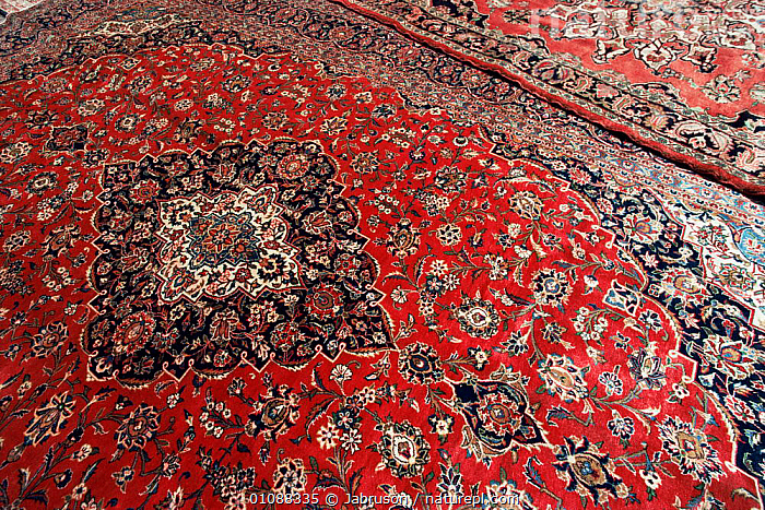 Fine persian carpet made with vegetable dyes, Tehran, Iran, ARABIA,ARTIFACTS,ASIA,PATTERNS,MIDDLE-EAST , Bruce Davidson, Jabruson