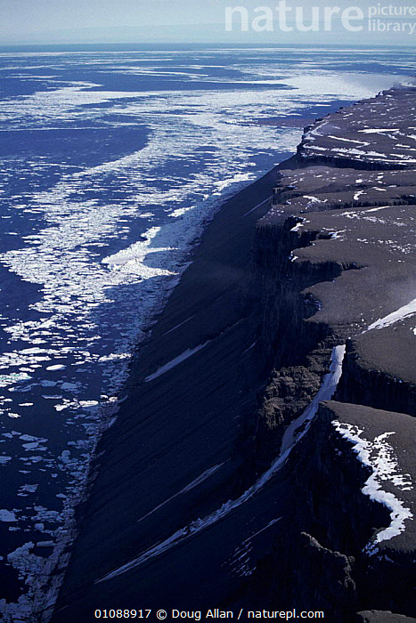 Aerial view of Devon island, in summer with pack ice offshore, Canadian arctic, AERIAL,COASTS,DA,ICE,NORTH AMERICA,PACK,SUMMER,VERTICAL ,AERIALS, Doug Allan