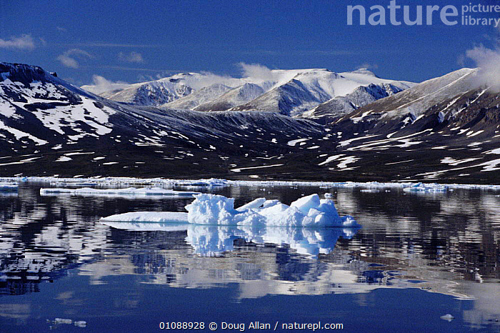 Daneborg Fjord in summer NE Greenland, LANDSCAPES,SEA,ARCTIC,COASTS,GREENLAND, Doug Allan