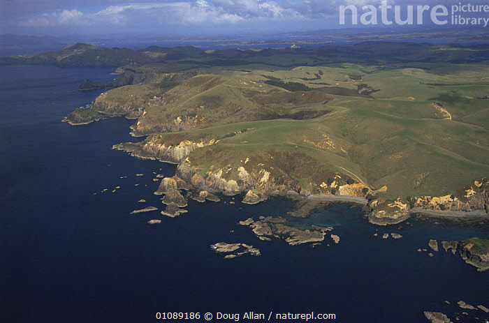 Aerial view of coastal landscape NE North Island, New Zealand, AERIALS,AUSTRALASIA,CLIFFS,COASTS,HORIZONTAL,LANDSCAPES,NEW ZEALAND,Geology, Doug Allan