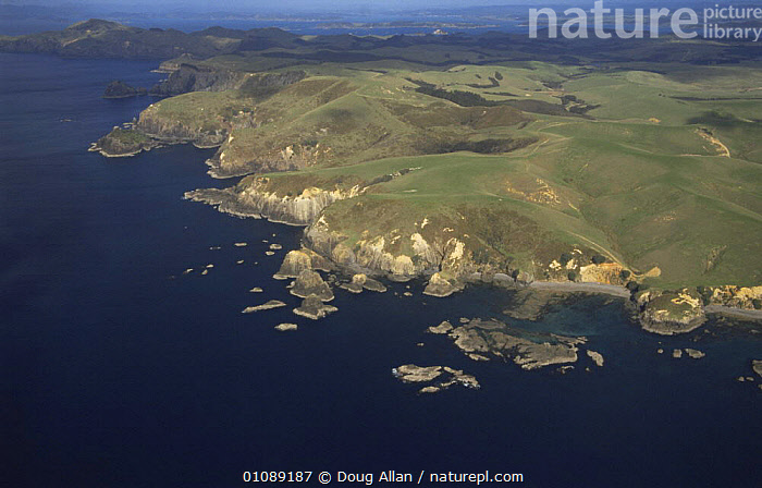 Aerial view of coastal landscape, NE North Island, New Zealand, AERIALS,AUSTRALASIA,CLIFFS,COASTAL WATERS,COASTS,ISLANDS,LANDSCAPES,MARINE,NEW ZEALAND,SEA,Geology, Doug Allan